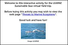 Threats to Marine Ecosystems activity